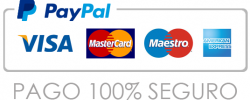 pago_seguro_paypal